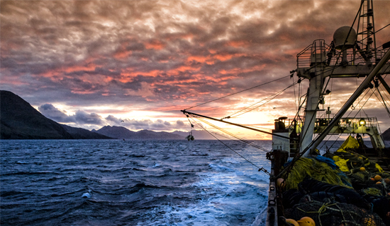 Race for Fish in Shortest Bering Sea P Cod Season Pushes Council Towards Rationalization Plan